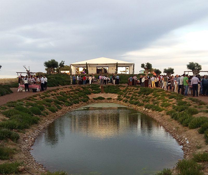 eventos-sociales-carpa-lago